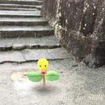 小田原城でポケモンGO!レアポケモン「ベロリンガ」がいたよ!