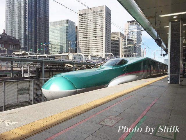 東京駅新幹線ウォッチング・はやぶさの写真