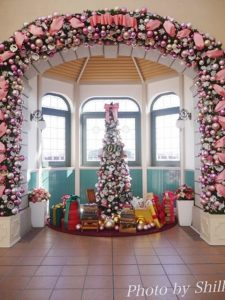 ディズニーリゾートラインクリスマス