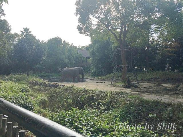zoo023