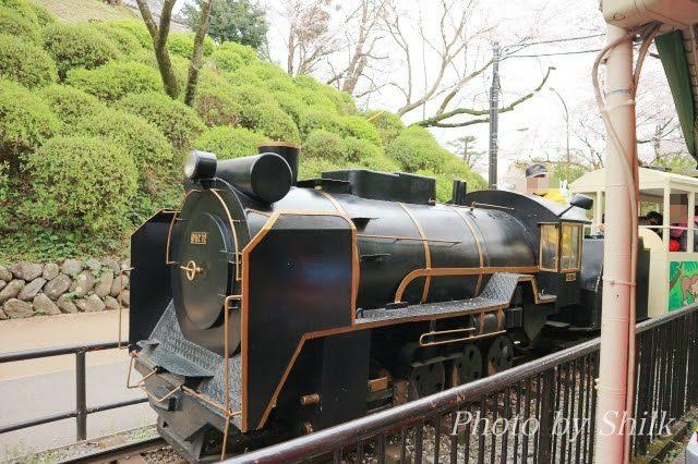 小田原城こども遊園地はのりもの大好きちびっ子に最適!コスパ抜群