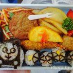 大井川鉄道のお弁当はどれも美味しい♪シルク家チョイスをご紹介