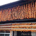 甲州ころ柿(干し柿)と武田信玄恵林寺で秋を満喫♪