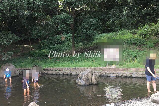 公園水遊び
