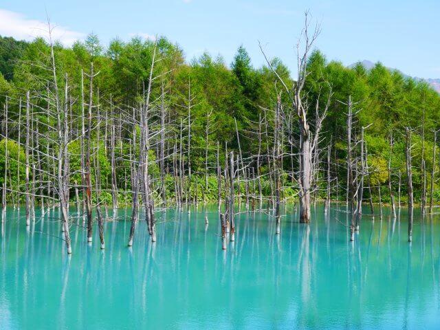 北海道青い池