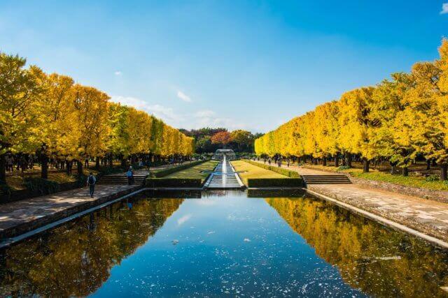 国営昭和記念公園のイメージ