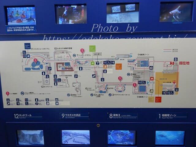 新江ノ島水族館・館内MAP