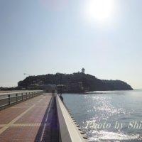 新江ノ島水族館周辺の子供連れにオススメスポットは?