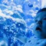 油壷マリンパークは赤ちゃん連れでも安心!授乳室などをレポート