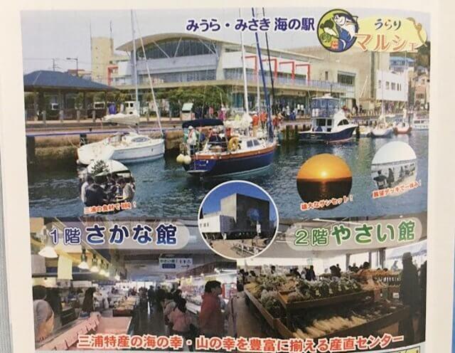 三浦半島・三崎漁港