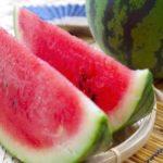 「肥後庵」のフルーツギフトはこの夏の贈り物にピッタリです!!